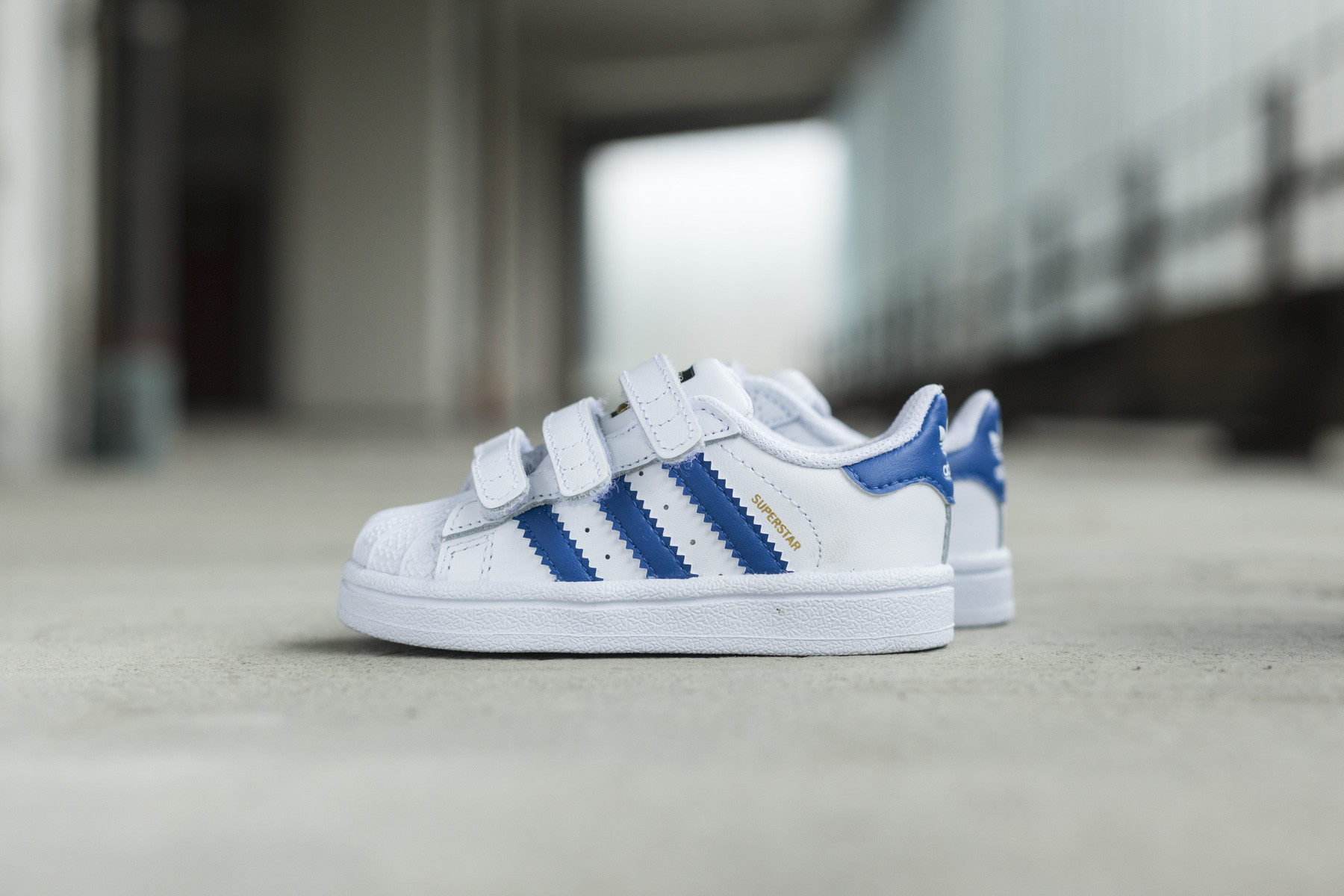 Adidas Superstar Foundation Cf Barn Sneakers Sneaker No